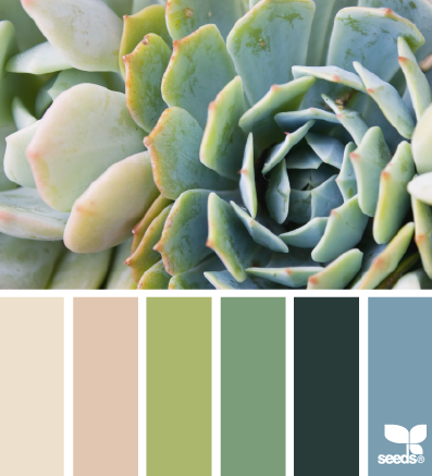 Succulent Hues color palette by Design Seeds
