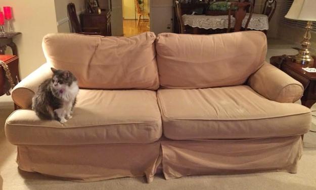 Quatrine Sofa Before Slipcover Makeover
